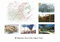 景观树,办公建筑,会所建筑,道路景观,地面铺装,景石