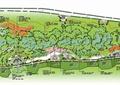 公园景观,绿地景观,公共绿地