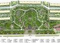 住宅景观规划,小区景观,道路,建筑,景观树