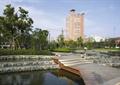 水池景观,木栈道,台阶,台阶水景,景观树,公园景观