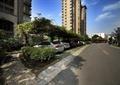停车场,弧形花架,园路,地面铺装,住宅景观