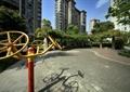 锻炼器材,地面铺装,弧形花架,住宅建筑,住宅景观
