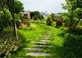 汀步,草坪,乔木灌木