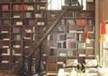 楼梯,地面铺装,装饰摆件,书架,沙发茶几,花瓶插花,餐厅