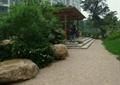 园路,地面铺装,景石,草坪,台阶,廊架,住宅景观