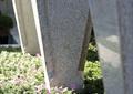 花卉植物,景观柱,石柱