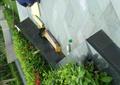 花池,花池坐凳,花池花坛,地面铺装