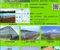 温室大棚,温室建筑