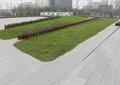 园路,地面铺装,草坪,花卉植物