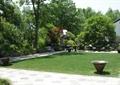 草坪景观,小品,园路,地面铺装,休闲桌椅,景观树