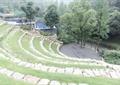 木平台,栏杆,台阶式草坪,景观树