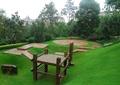 木观景台,木平台,草坪,景观树,住宅景观