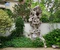 置石,景石,花卉植物,景觀樹,圍墻