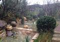水池,景石,自然石,驳岸