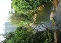 水沟,河流,驳岸,景石,自然石