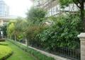 铁艺围墙,草坪,灌木丛,景观树,住宅景观