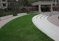 草坪,园路,地面铺装,台阶,门廊,壁灯,石坐凳,住宅景观