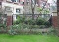 铁艺围墙,草坪,花卉植物,景观树,住宅景观