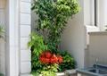 树池,洗菜盆,窗户,盆栽植物
