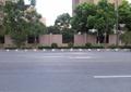 街道,围墙,路灯,围栏,围栏柱,树池