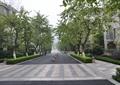 道路绿化,道路景观,道路铺装,行道树景观