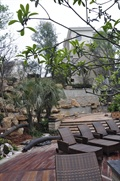 休闲椅,木平台,台阶踏步,水池水景