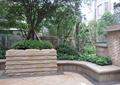 樹池景觀,矮墻,種植池,地面鋪裝,住宅景觀