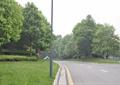 草坪景观,道路铺装,排水沟
