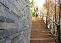 文化墙,楼梯踏步,木楼梯,栏杆扶手