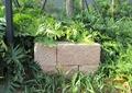 景石石头,灌木丛,景观小品