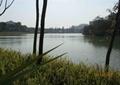 滨水景观,水池水景,水体景观