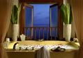 浴室,浴缸,花瓶插花,窗子