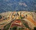 梯田,梯田景观,生态景观,旅游景观,农业景观