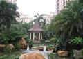 水池景观,荷花池,景观亭,假山石头