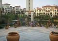 驳岸景观,小广场,广场铺装,花钵