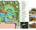 庭院平面图,庭院花园,景观意向图