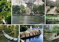 溪流水景,喷泉水池,水上石栈道,亲水平台