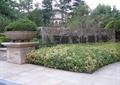 小區入口景觀,標志景墻,花缽,綠籬