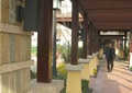 亭廊组合,廊架,廊架柱,绿化带