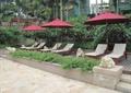 树池,花坛,雕塑小品,木平台,遮阳伞,躺椅