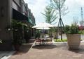 休閑廣場,傘座椅,花缽,盆栽,盆栽植物,樹池