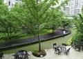 休闲区景观,休闲桌椅,树池,花坛,花坛坐凳