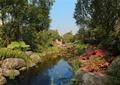 小区河流,自然石驳岸,景石