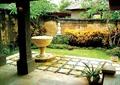 庭院景观,水钵,盆栽植物