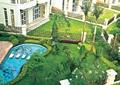庭院,庭院花園,花園景觀