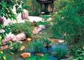 庭院景观,凉亭,景石水景
