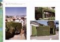 植物景墙,绿植