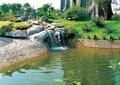 景石假山,水池,自然石驳岸,卵石驳岸