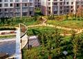 小区中庭景观,小区绿化,园路,路灯,草坪,花池