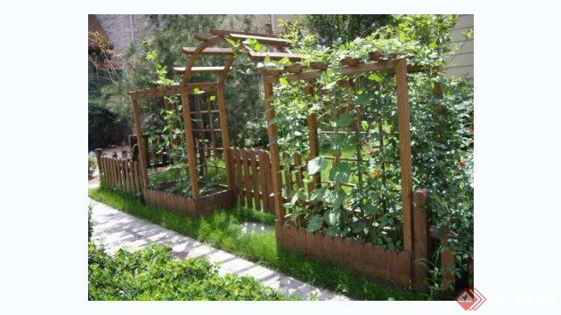 现代别墅庭院花园实景图(3)